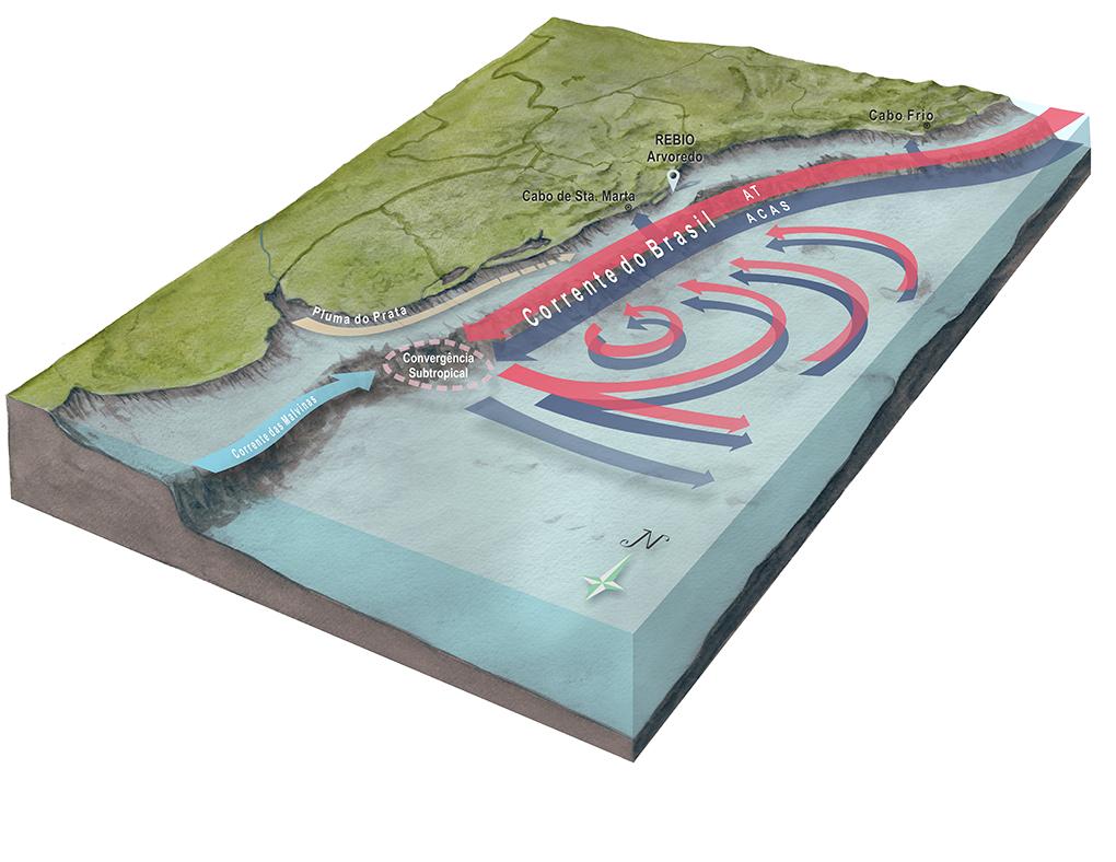 Circulação oceânica - Ilustração para livro de divulgação científica